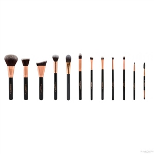 Blank Canvas Cosmetics  12 Piece Rose Gold Black Dimension Series Set