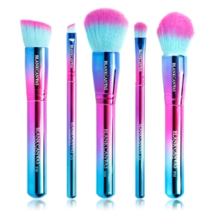 Blank Canvas Cosmetics  5 Piece Holographic Brush Gift Set