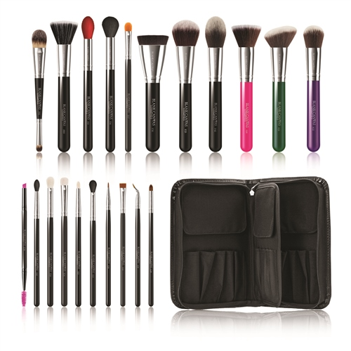 Total Pro 21 Piece Deluxe Brush Set With Folio  - Click to view a larger image