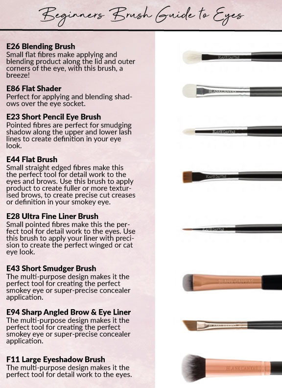 Brush Guide To Makeup Application